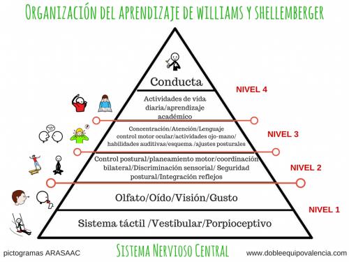 organización del aprendizaje