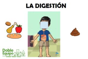 explicacion de la digestion